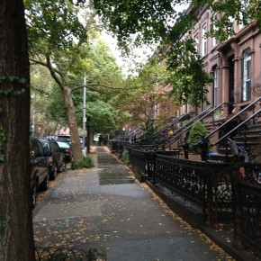 Brownstones in Park Slope on a Rainy Day